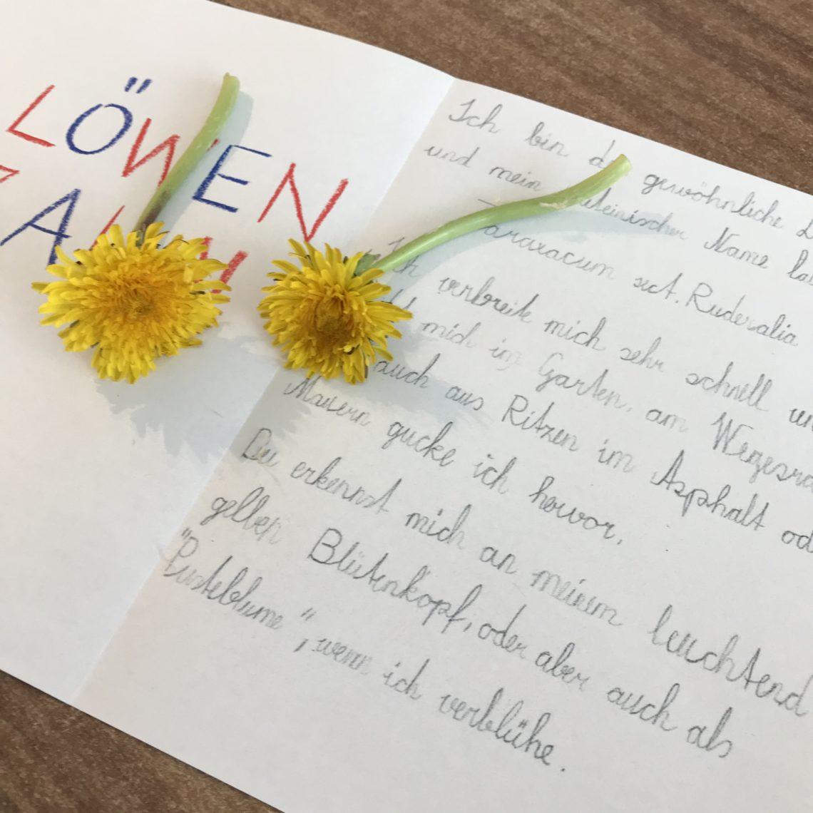 Blumenspiel kennenlernen